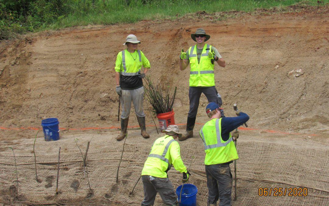 SynTerra's stream restoration at Kiwi Creek